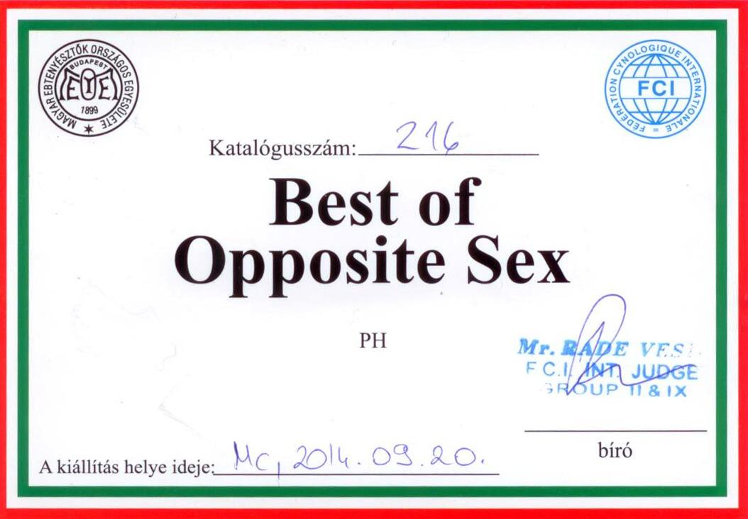 2014.09.20. Miskolc